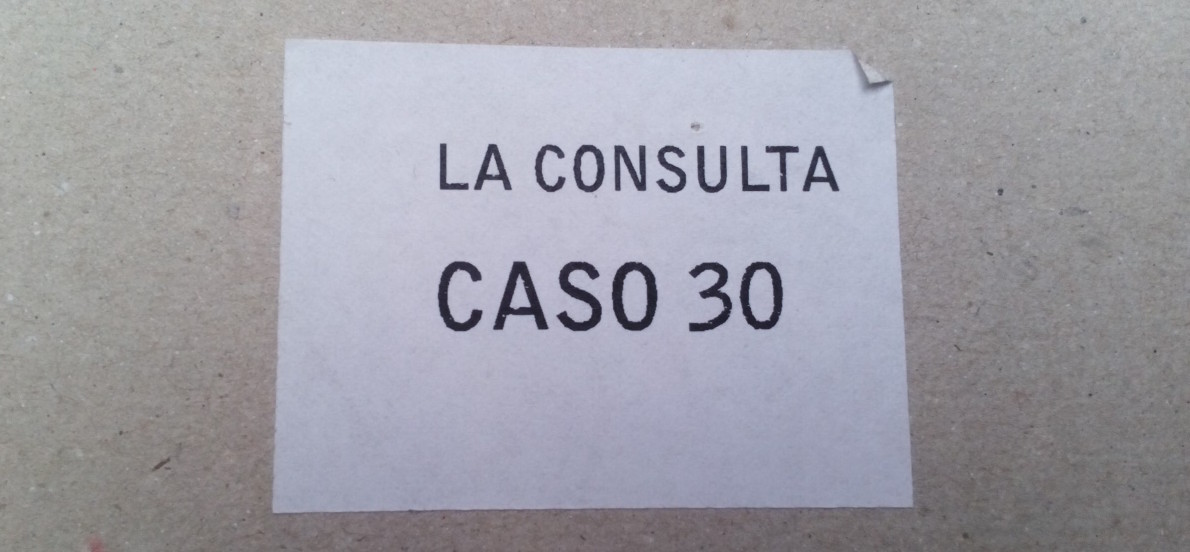 La Consulta Caso 30